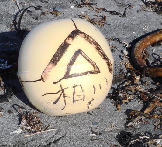 AK tsunami debris